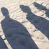 What's In Your Shadow?