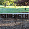 Your Greatest Strength